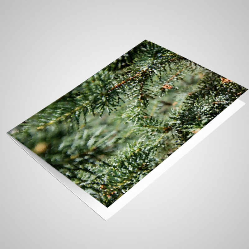 blank 6x4 note cards with envelopes pack of 25